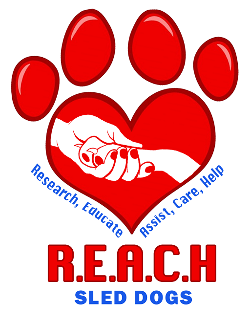 REACH Sled Dogs Logo